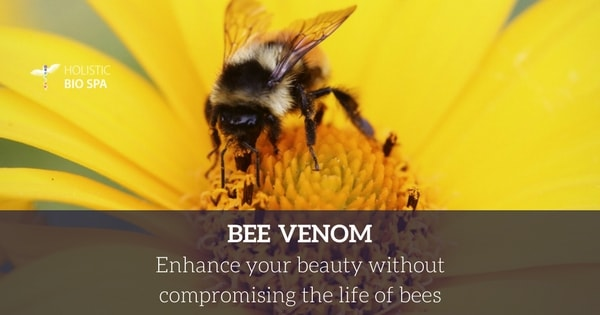 bee venom enhances your beauty without compromising the life of bees